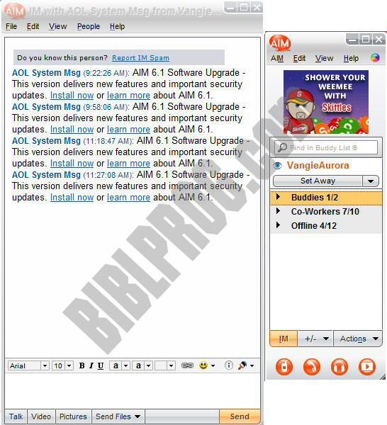 Screenshot AOL Instant Messenger (AIM)