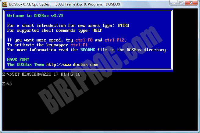 Screenshot DOSBox