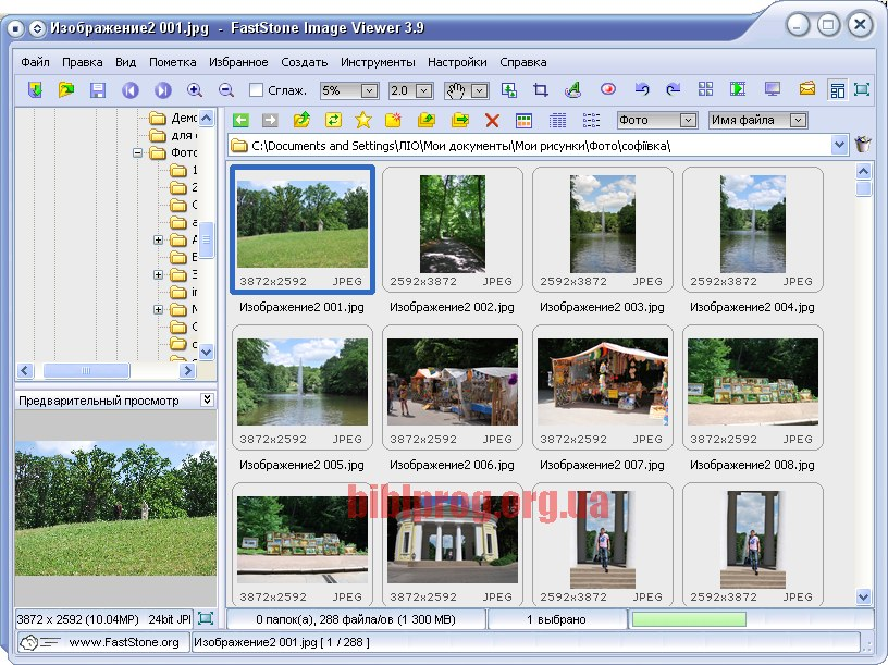 download image viewer