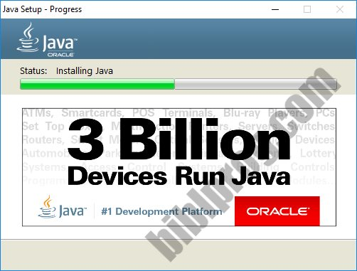 Screenshot Java Runtime Environment