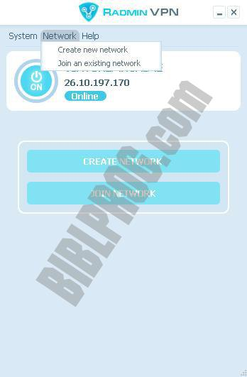 Screenshot Radmin VPN